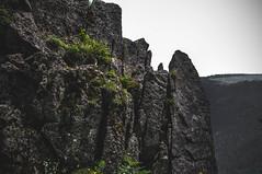 DSC_0061 (Hilðr) Tags: mountains trees rocks forest woods view horizon canyon hills pine stones moss norse inspiration spirit hiking dark