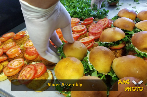 """Slider Assembly • <a style=""""font-size:0.8em;"""" href=""""http://www.flickr.com/photos/159796538@N03/44594278992/"""" target=""""_blank"""">View on Flickr</a>"""