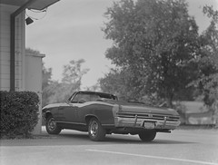 68 chevelle malibu ss convertible on 4x5 film (Garrett Meyers) Tags: graflexseriesd4x5 graflex graflex4x5 4x5film 4x5 garrett meyers largeformat blackandwhitefilm homedeveloped vintagecar chevelle malibu 68 ss convertible