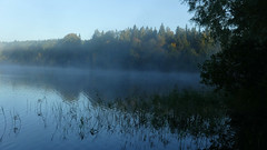 P1120628a (SeppoU) Tags: suomi finland lohja nummi järvi lake aamu morning utu mist syyskuu september 2018 lumix