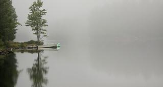 Foggy Saturday morning in Muskoka