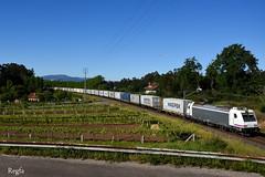 Guillarei (REGFA251013) Tags: low cost rail tren train comboio mercancias 5301 253001 maerks contendores
