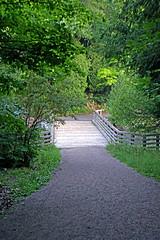 DSC01594 - Trail Bridge (archer10 (Dennis) 153M Views) Tags: quebec sony a6300 ilce6300 18200mm 1650mm mirrorless free freepicture archer10 dennis jarvis dennisgjarvis dennisjarvis iamcanadian novascotia canada gatineaupark trail36 carbidewillsonruins ruins hike