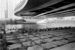 Along Toyohira river (threepinner) Tags: sapporo hokkaidou hokkaido northernjapan japan river bridge 札幌 豊平川 北海道 canon ftb nfd 28mm f28 orwo un54 selfdeveloped