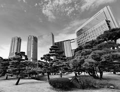 Monoliths (nikkorglass) Tags: monoliths hamarikyugardens tokyo japan nippon d700 1636f4vr nikkor nikon