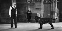 Mon chien c'est quelqu'un (stephaneberla) Tags: animals animaux ecosse edimbourg edinburgh fringues scotland bw blackwhite blackandwhite chien cinemascope costume country dog effects effets fx mamifères mammal nb noiretblanc panoramic panoramique photography suit vêtements