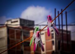 Ganchos de ropa - Clothespins #fotodeldia #photooftheday #igers #igersvenezuela #all_shots #sinfiltro #carloscolmenarezphotography #ig_lara_ #ig_venezuelan_pro (KARLINHOS18) Tags: iglara igers igersvenezuela igvenezuelanpro carloscolmenarezphotography fotodeldia sinfiltro allshots photooftheday fuji fujifilm finepixs1800 flickr colors colores streetphotography fotografiacallejera cabudare