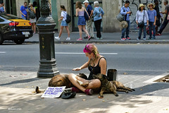 Noia i Gossos (rossendgricasas) Tags: barcelona rambla dog girl street streetphotography people light photo photographer photoshop nikon tamron colors colorimage