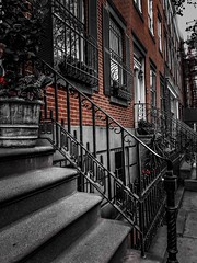 The Stoop  (*EXPLORE) (avilacats) Tags:
