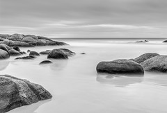 Calm (Matt OZW) Tags: kingisland monochrome landscape seascape long exposure rocks