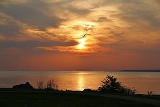 Sunset walk ( Explored-many thanks )
