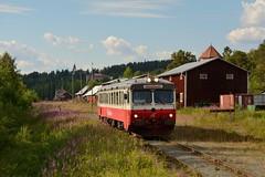 Inlandsbanan Y1 1356 Vilhelmina (BahnFan99) Tags: inlandsbanan inlandsbahn inland line sj y1 itab 1356 vilhelmina schweden bahnhof railway tåg zug eisenbahn järnväg
