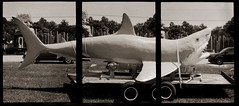 Shark on flatbed (efo) Tags: bw triptych film olympuspend shark model flatbed truck roadside virginia naturalbridge rockbridge penorama