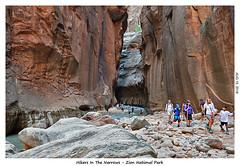 2D-TheNarrows-093 (stereo_eyz) Tags: zion nationalpark utah virginriver hiking canyon rock water narrows