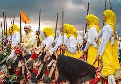 FANTASIA WOMEN TEAM (bechwiya) Tags: fantasia womenteam morocco casablanca horses nikond3200