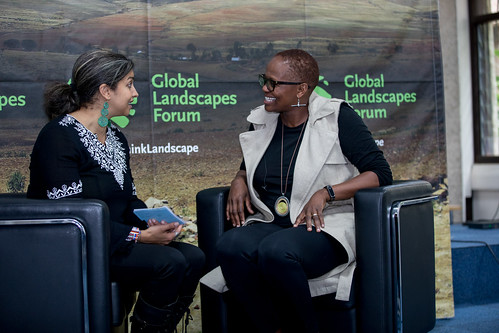 GLF Nairobi: Forest and Landscape Restoration in Africa