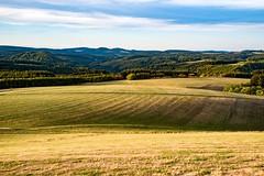 Spätsommerabend in der Vulkaneifel (clemensgilles) Tags: rheinlandpfalz view sonnenuntergang sommerabend sunset felder wälder trees panorama vulkaneifel deutschland eifel germany
