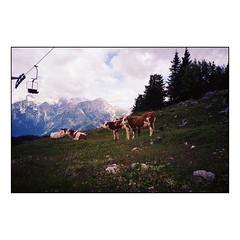 Velika Planina_Slovenia (Koprek) Tags: olympusxa kodak c200 velikaplanina film analog slovenia landscape summer 2018 mountains