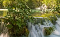 Plitvice (03) (Vlado Ferenčić) Tags: waterfalls vladoferencic water vladimirferencic plitvicelakes plitvičkajezera plitvice lakes nikond600 tamron287528 hrvatska croatia rivers