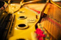 Inside of a Piano (moaan) Tags: kobe hyogo japan jp instrument piano steinwaysons inside serene serenity silentpiano focusonforeground selectivefocus depthoffield bokeh bokehphotography leica leicaphotography leicamp type240 noctilux50mmf10 leicanoctilux50mmf10 utata 2018