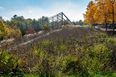 Passerelle du Graoully (Metz, France)-109 (MMARCZYK) Tags: metz grandest france moselle 57 parc de la seille pont ost bridge passerelle kosmi terrell ouvrage dart ingenierie paysage