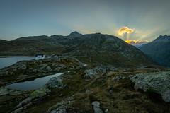 Top of Grimsel Pass (Switzerland) (NEX69) Tags: grimsel grimselpass ilce7rm2 kantonwallis schweiz sigma1424mm128dg sonyalpha7rii switzerland sunset sigmaart mc11
