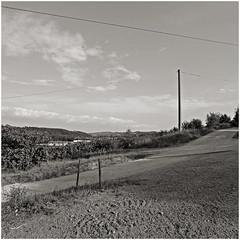 anselmo 75 (beauty of all things) Tags: italien toskana montespertoli landscape landschaft quadratisch sw bw anselmo
