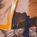 Arte na Passarela - 13ª Edição (18/08/2018)