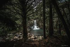 Waiau Falls (hakannedjat) Tags: waterfall nz nzmustdo nzwaterfalls nzmustsee sony sonynz sonya7rii longexposure newzealand zeiss