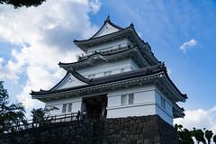 小田原城 (danieltamkl) Tags: japan sony sel1670z variotessar16704za a6000 travel hakone 箱根 日本 東京 sight landscape colour countryside site asia asian green nature castle