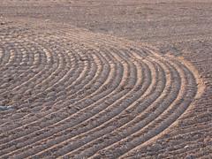 ....nochmal Furchen.... (elisabeth.mcghee) Tags: furchen acker feld field farmerspatch tracks furrows oberpfalz upper palatinate soil erde