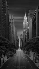Dali's Distant Dream - Chrysler Building New York (Julia-Anna Gospodarou) Tags: blackandwhite blackandwhitefineartphotography envisionography photographydrawing chryslerbuilding newyorkcity newyorkarchitecture fineartarchitecturalphotography vertorama
