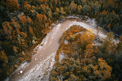 Rouge River (azhukau) Tags: autumn nature forest tree landscape yellow scenics leaf outdoors season beautyinnature woodland orangecolor multicolored goldcolored colors red travel aerial djimavic2pro dronephotography aerialphotography pointofview river water birdview creek stream