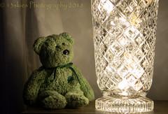 Sometimes (HTBT) (13skies (broke my wrist)) Tags: lights fairylights crystal teddybeartuesday fun mesmerize lowlight happyteddybeartuesday htbt greenbear sonya57