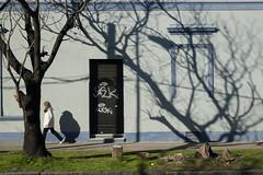 (Duplicado) Tags: rue calle argentina argentine arbres arboles sombras ombres camiar marcher barrio quartier lomasdezamora fachada façade azul bleu fujifilm