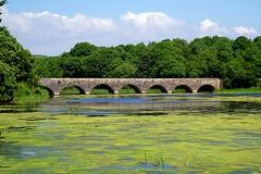 Beautiful Bridge (Gemma Hampton) Tags: arch stackpole wales uk nationaltrust pembrokeshire