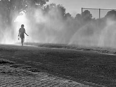 ionisé (pierre-vdm) Tags: berlin été sommer summer brouillard brume nebel fog eau wasser water silhouette