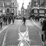 Tram Ways [Amsterdam Atmosphere] (236/365) thumbnail
