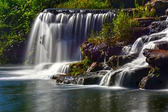 Don't Go Chasin' Waterfalls (Phyllis74) Tags: papajohnswaterfall waterfall louisville louisvillekentucky kentucky landscape
