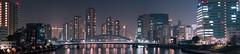 Sumida River - Tokyo, Japan (inefekt69) Tags: tokyo japan night nikon d5500 東京 日本 sumidariver buildings river panorama bridge 墨田 隅田川 tsukishima ishikawajima sakura hanami cherryblossoms