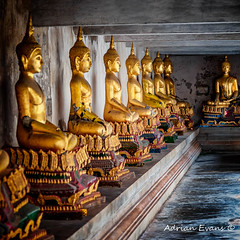 Golden Buddhas (Adrian Evans Photography) Tags: squareformat budahism buddhist siam monument thai buddha religion religious statues buddhism temple asia adrianevans golden relaxation architecture gold asian faith wat thailand