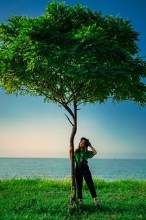 Tree & Freedom