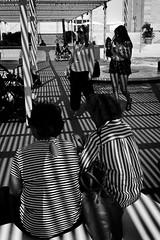 Italy - Lido di Venezia, 75 Mostra d'Arte Cinematografica (luca marella) Tags: lidodivenezia art cinema venice venezia mostra street stripes streetstyle lucamarella blackwhite bw bn biancoenero italy architecture women photography