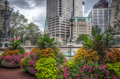Flowers At Monument Circle (donnieking1811) Tags: indiana indianapolis monumentcircle flowers architecture buildings lamps monument outdoors sky clouds hdr canon 60d lightroom photomatixpro