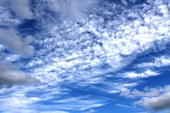 DSC_1610 (PeaTJay) Tags: nikond750 reading lowerearley berkshire gardens outdoors nature blue sky clouds