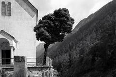 Santa Maria di Castromuro . Promontogno, Val Bregaglia (Toni_V) Tags: m2408655 rangefinder digitalrangefinder messsucher leicam leica mp typ240 type240 28mm elmaritm12828asph santamariadicastromuro promontogno bregaglia bergell alps alpen bw monochrome blackwhite schwarzweiss switzerland schweiz suisse svizzera svizra europe ©toniv church kirche 2018 180821 nossadonna graubünden grisons grischun