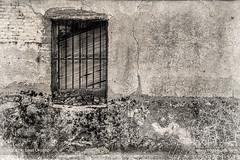 Hidden memories (ILO DESIGNS) Tags: 105mm 2018 artística avila d3300 julio monocroma texturing ventana fineart window old house facade wall decay monochrome blackandwhite artistic vintage retro spain españa rural time architecture europe