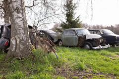 umsteigen (mariburg) Tags: rotten marode ruin decay desolate cars rustycars auto canoneos6d sigma35mm14dghsmart volvo
