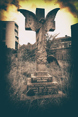 Avenging Angel (TheOriginalSteve) Tags: angel graveyard cemetery tombstone headstone 7artisans urbandystopia