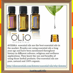 Essential Oils Best to Use (ŌLiO Essentials) Tags: best essential oil